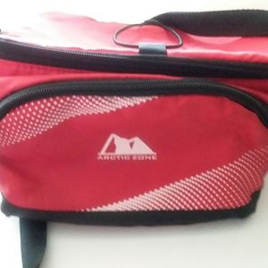 ARCTIC ZONE INSULATED COOLER BAG